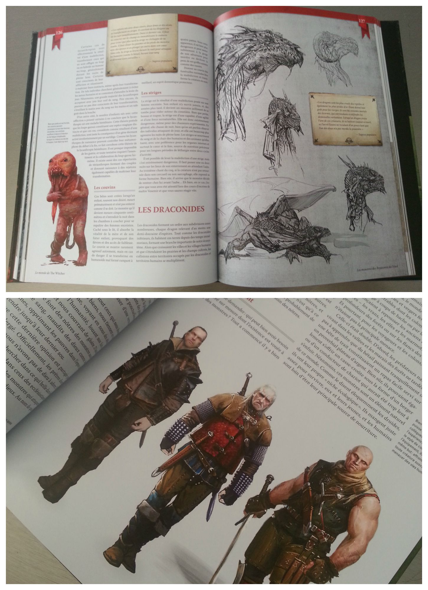 encyclopedie witcher